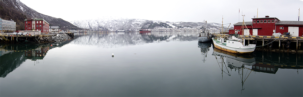 Panorama_Narvik